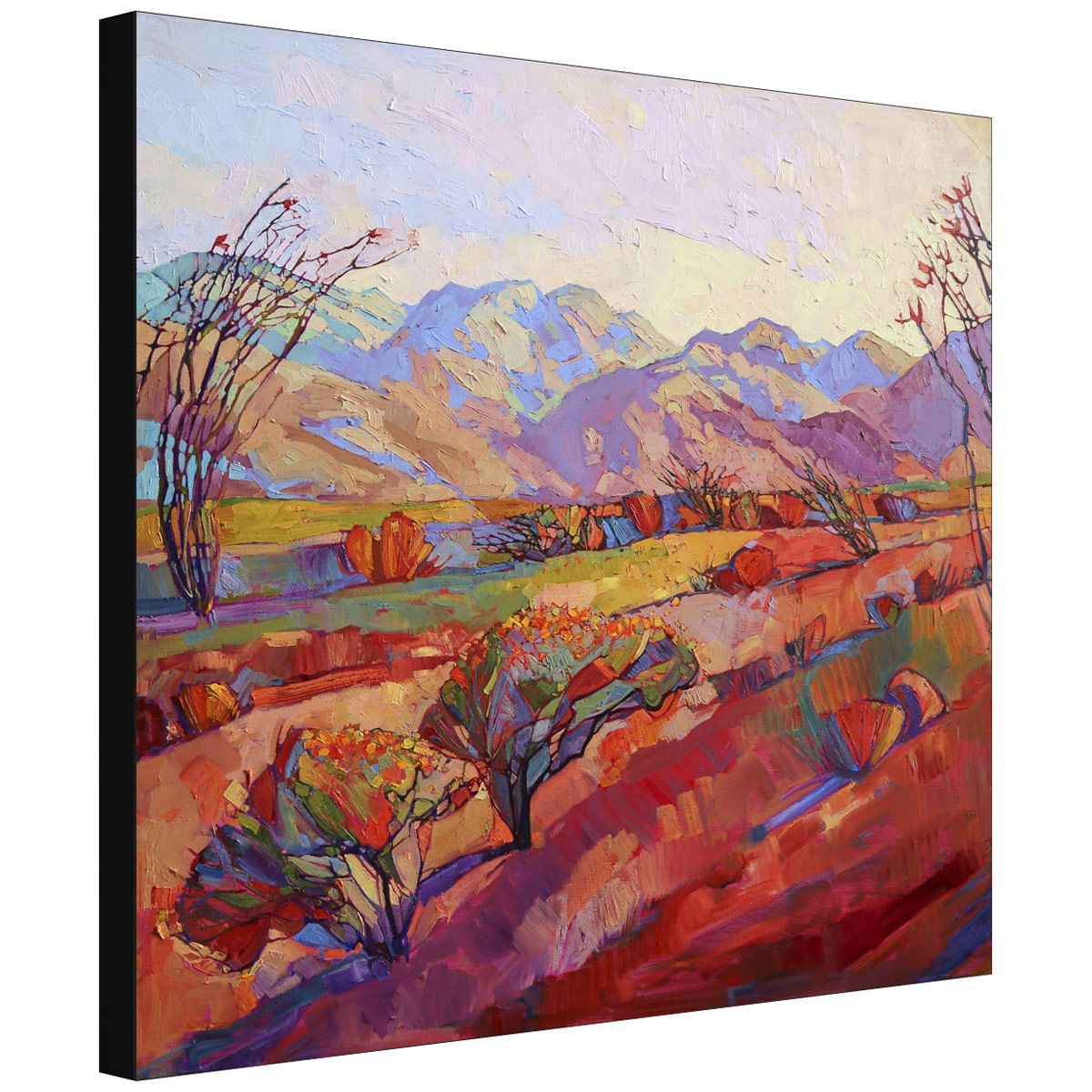 Ocotillo Triptych Middle Gallery Wrapped Canvas