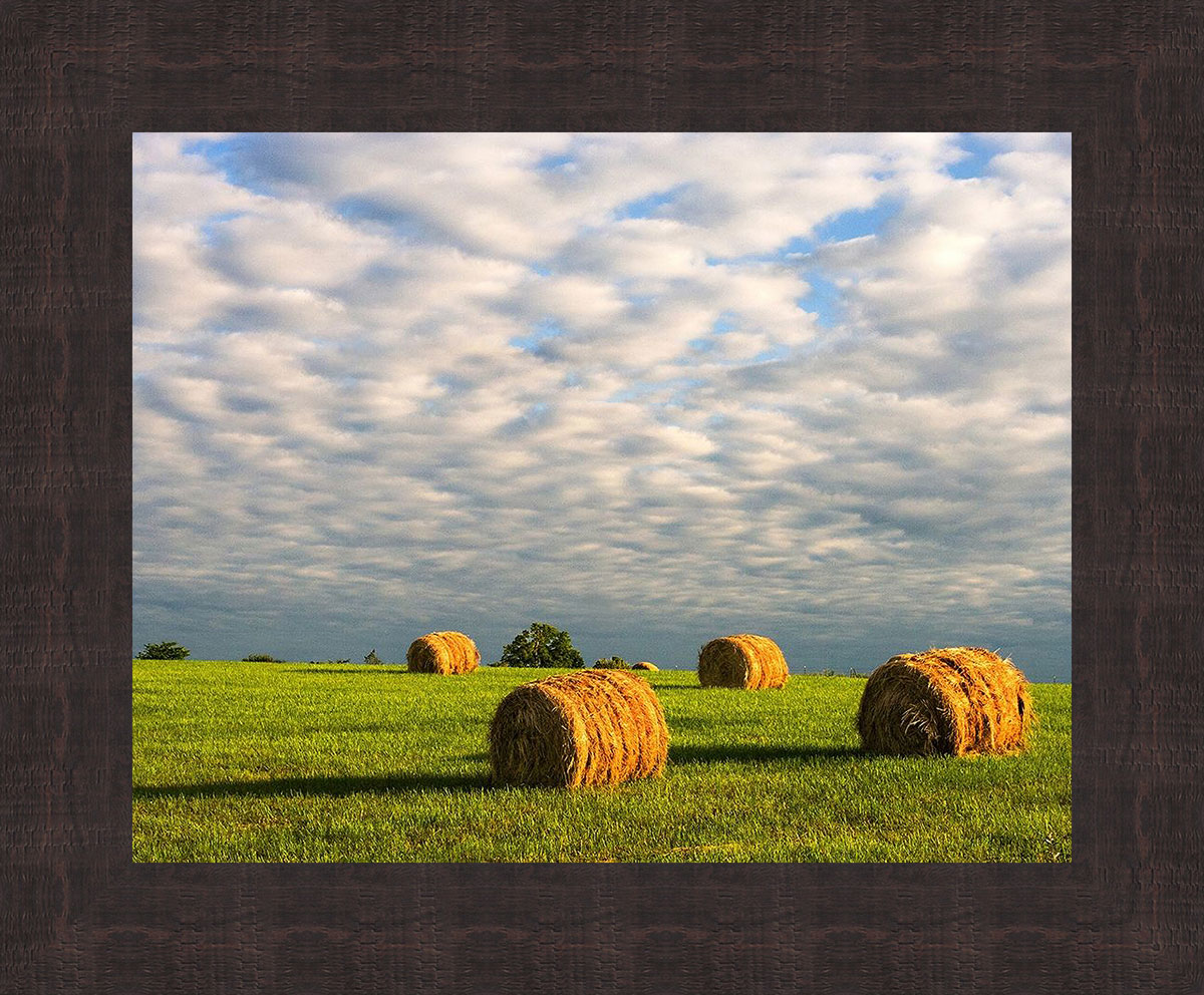 Oklahoma Plains Framed Wall Art