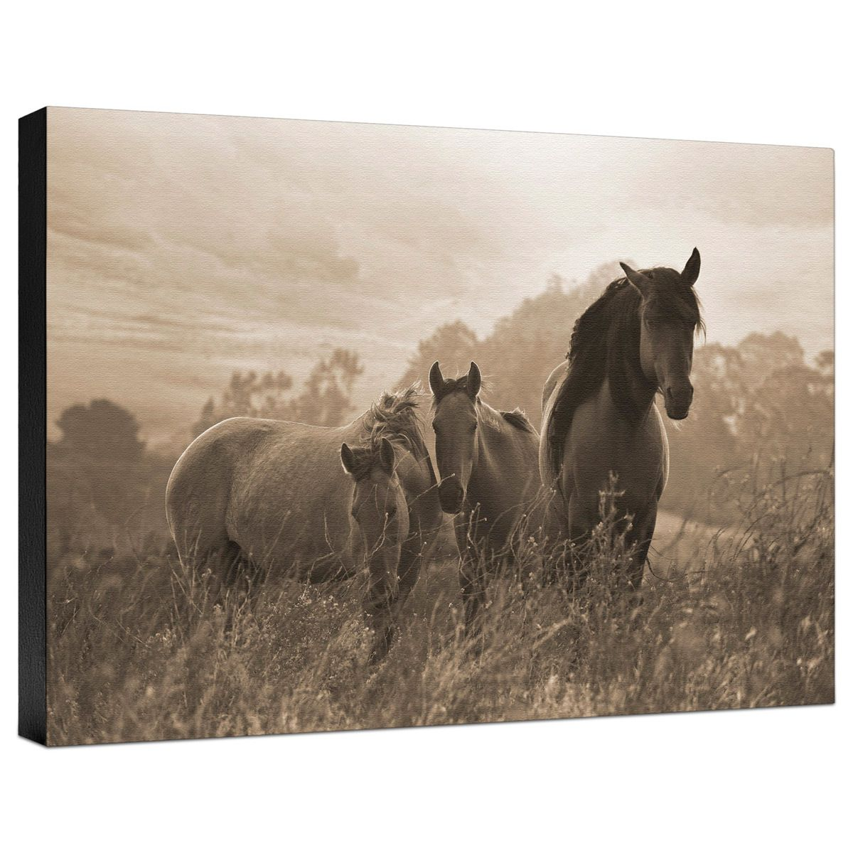 One Spring Morning Gallery Wrapped Canvas