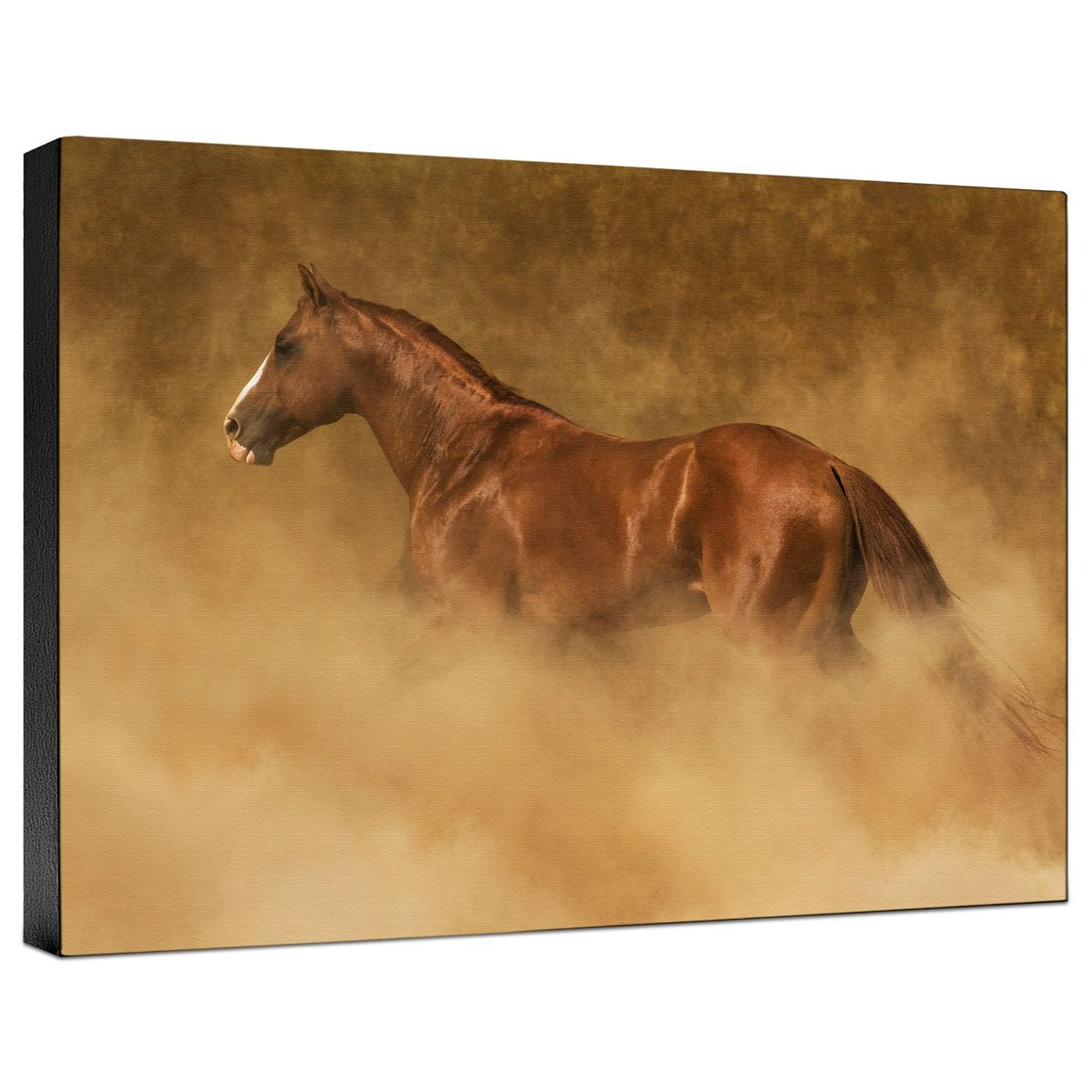 Out of the Dust Gallery Wrapped Canvas