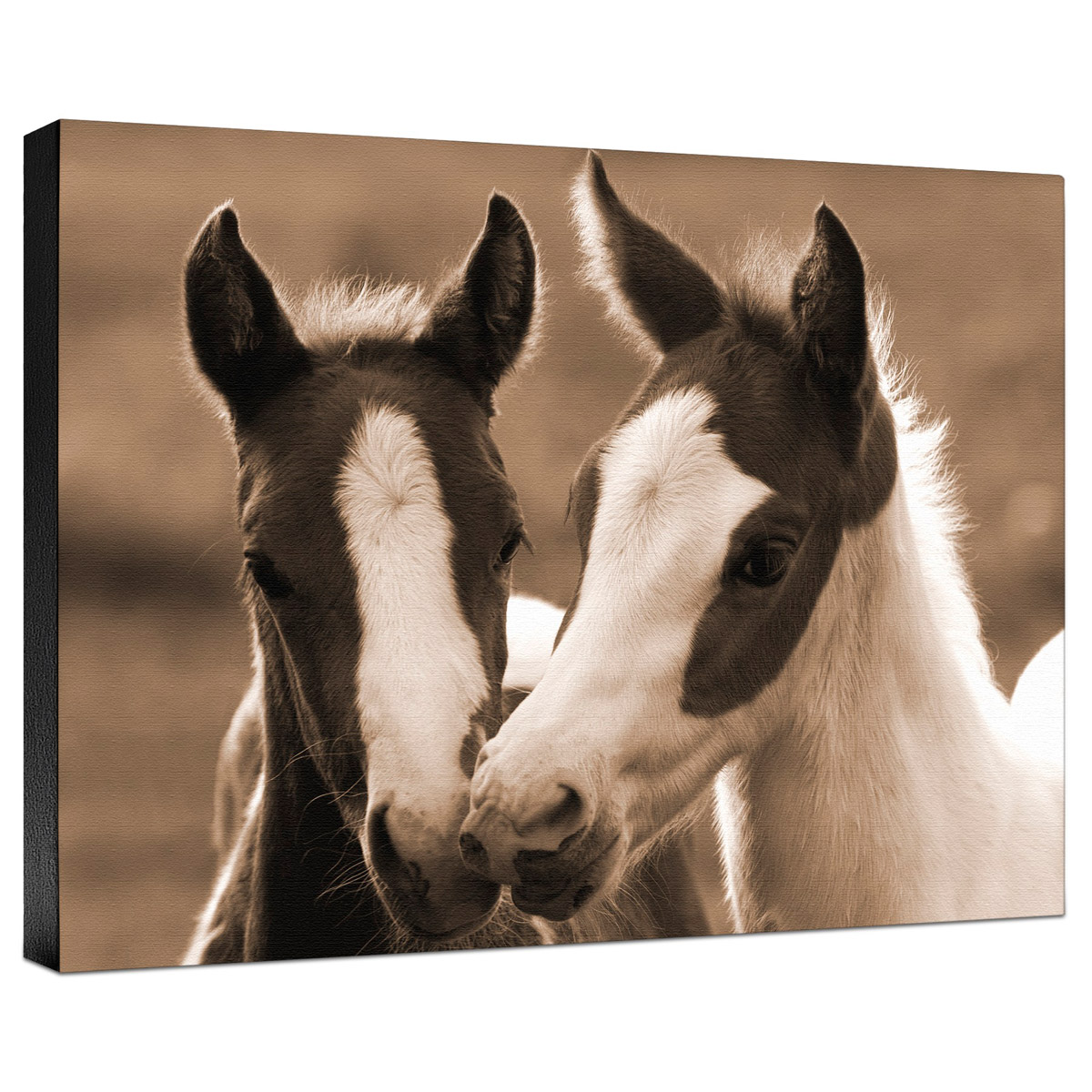 Playful Friends Gallery Wrapped Canvas