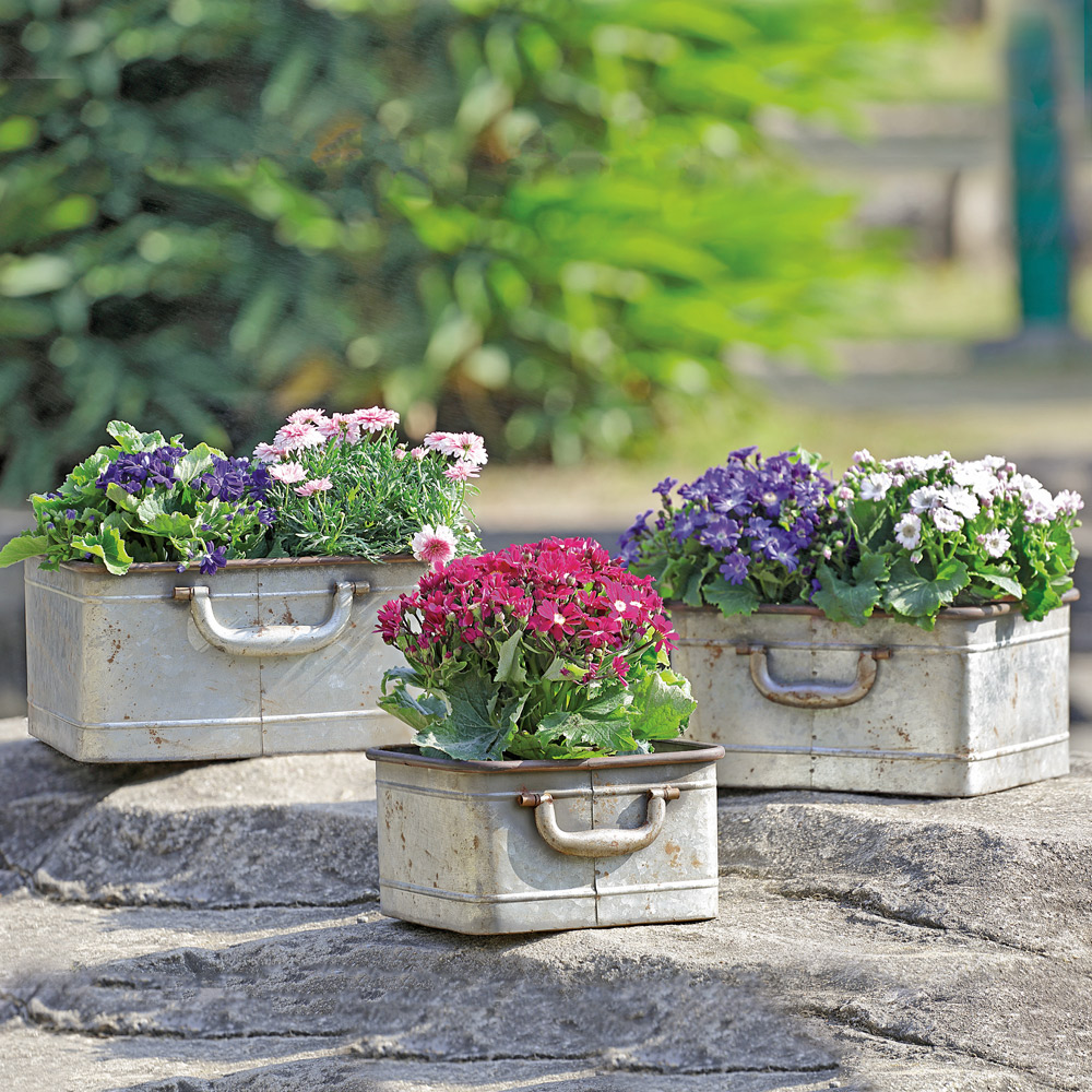 Rectangular Metal Planters with Handles