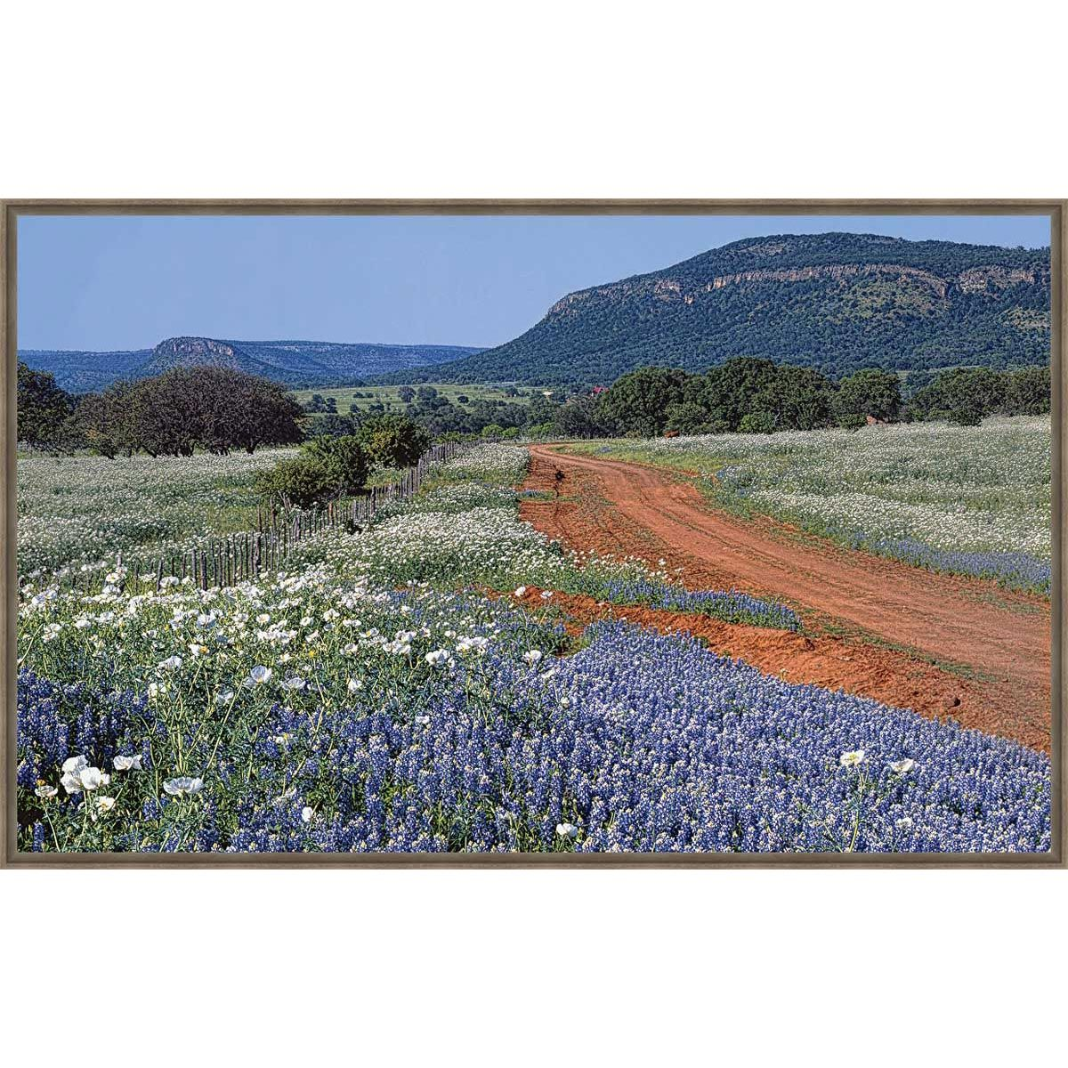 Red, White and Blue Hill Framed Canvas