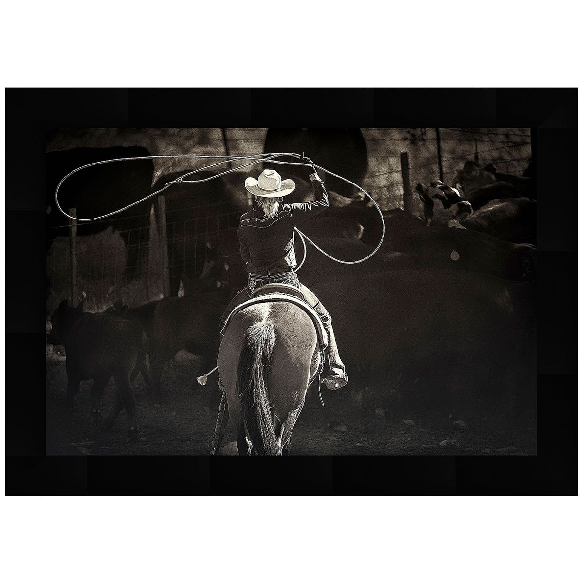 Rodeo Girl Framed Art