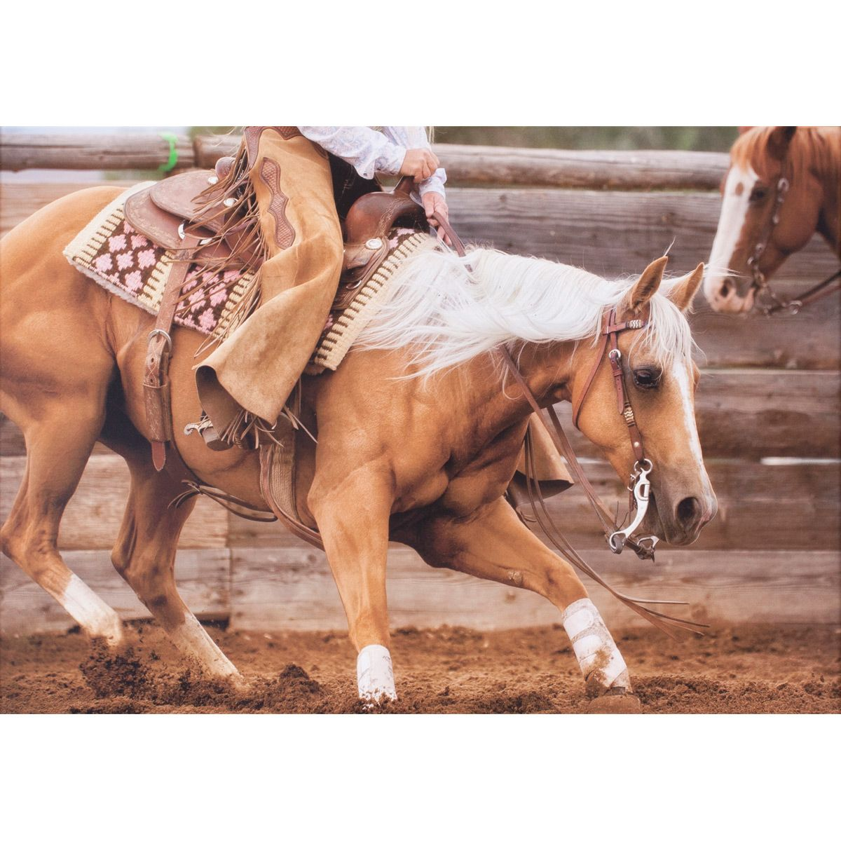Rodeo Horse II Canvas Art