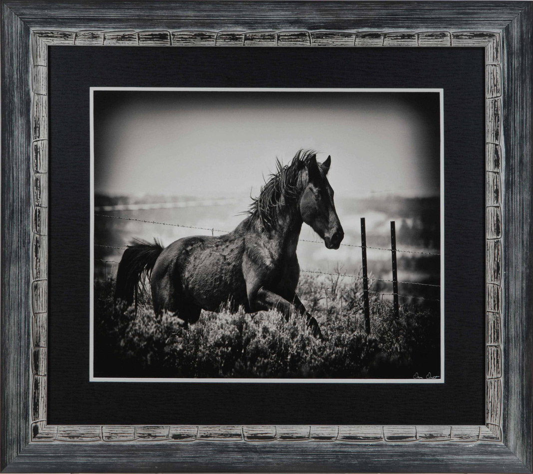 Running Horse Framed Art