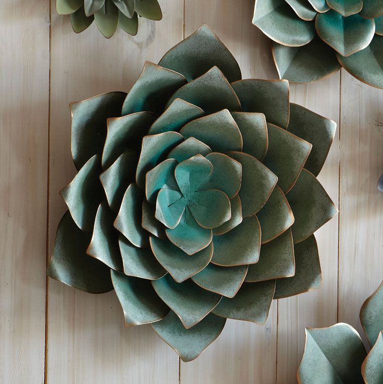 Saddle River Succulent Wall Art - Medium