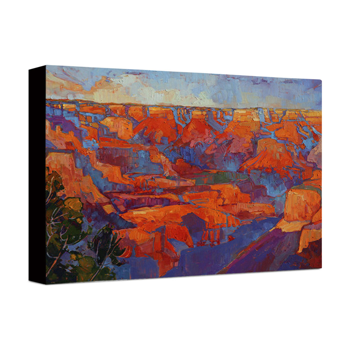Scenic Canyon Wrapped Canvas