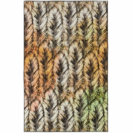 Scottsdale Feathers Rug Collection