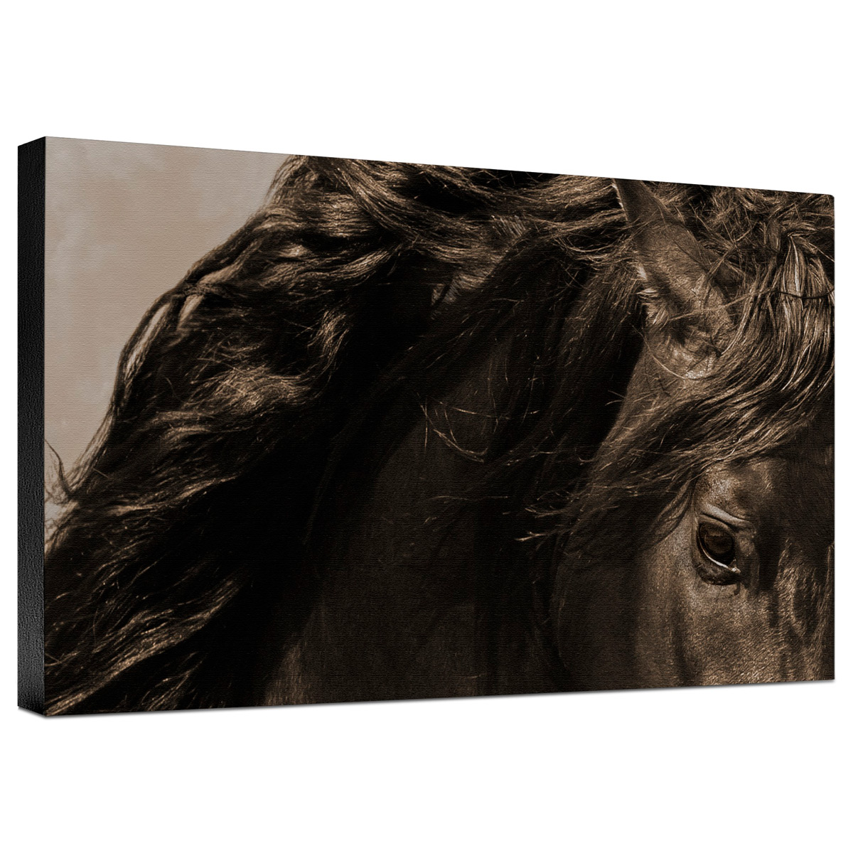 Sheraz Sepia Gallery Wrapped Canvas