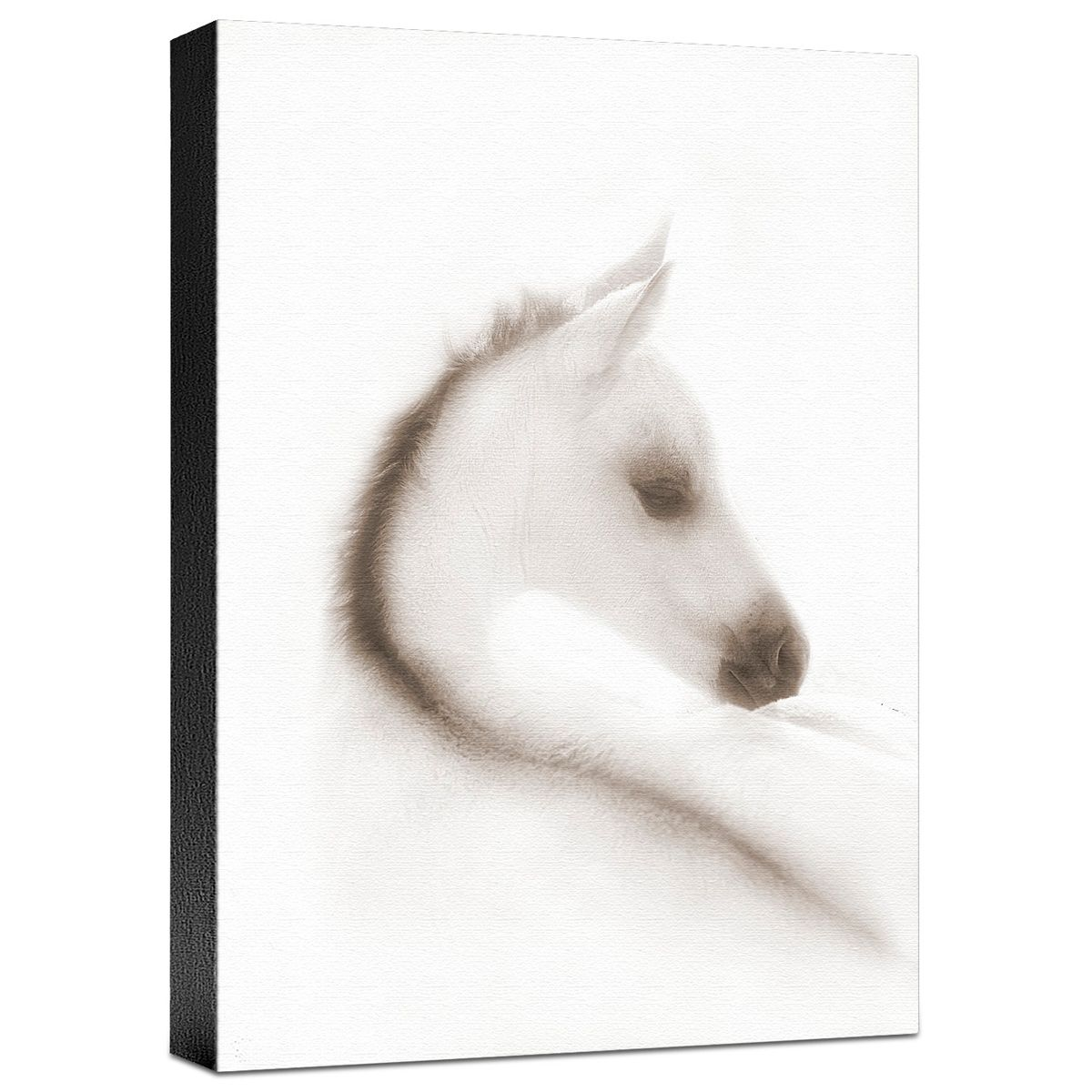 Snow White Gallery Wrapped Canvas