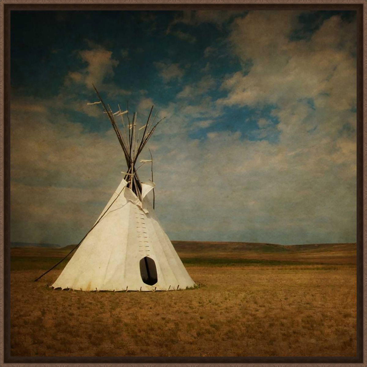 Solitude on the Plains Canvas Art