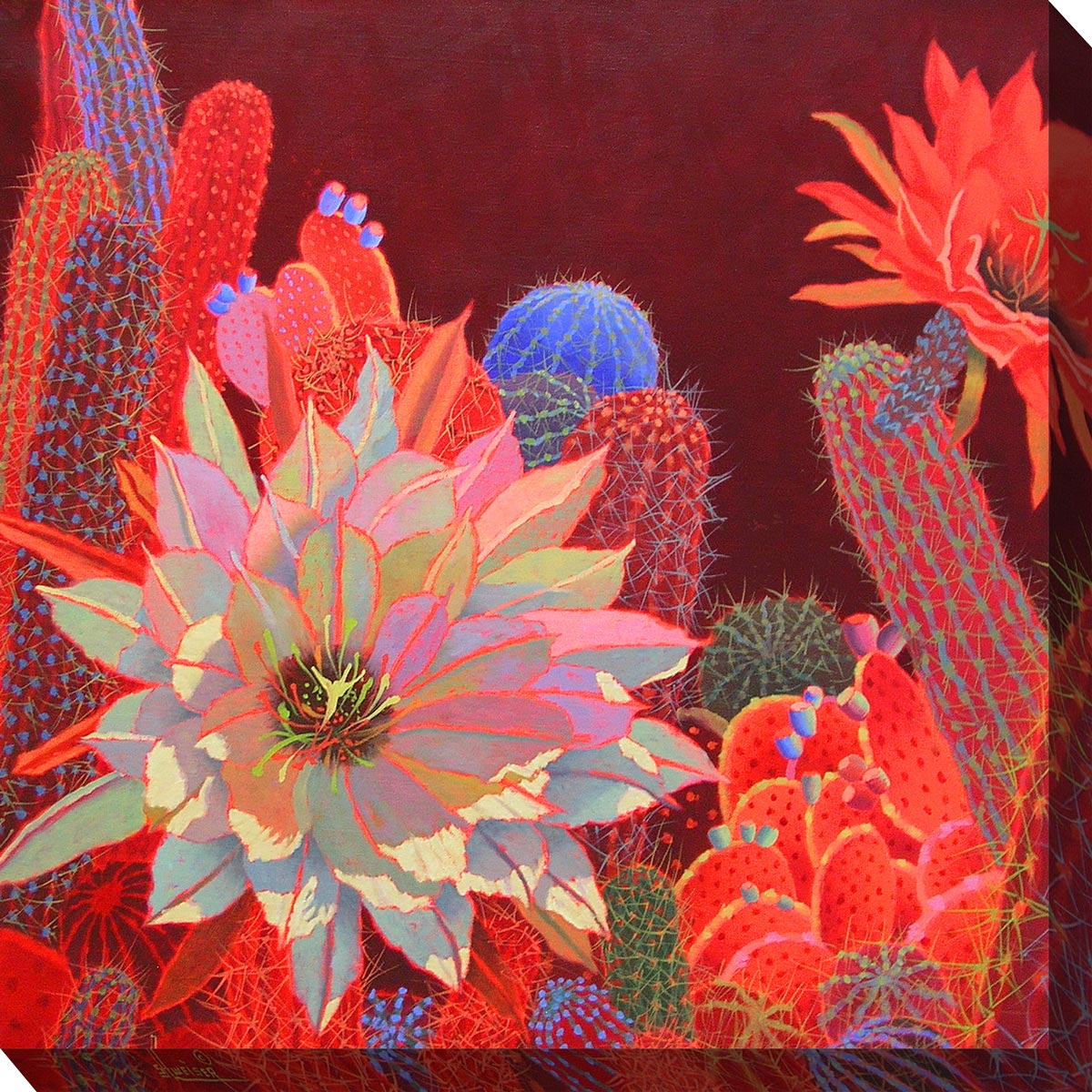 Southwest Botanicals III Canvas Art