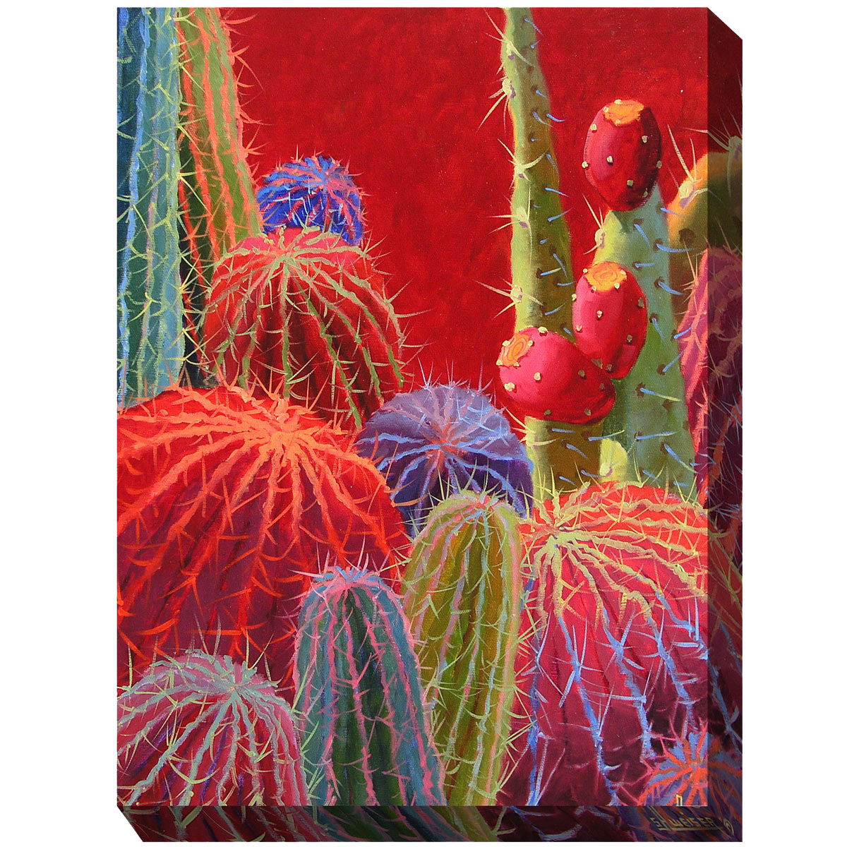 Southwest Botanicals IX Canvas Art