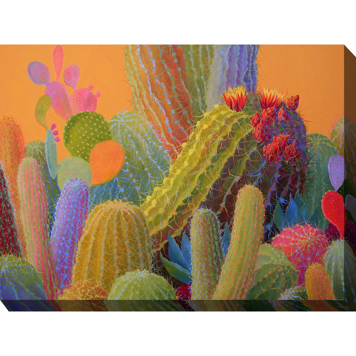 Southwest Botanicals V Canvas Art