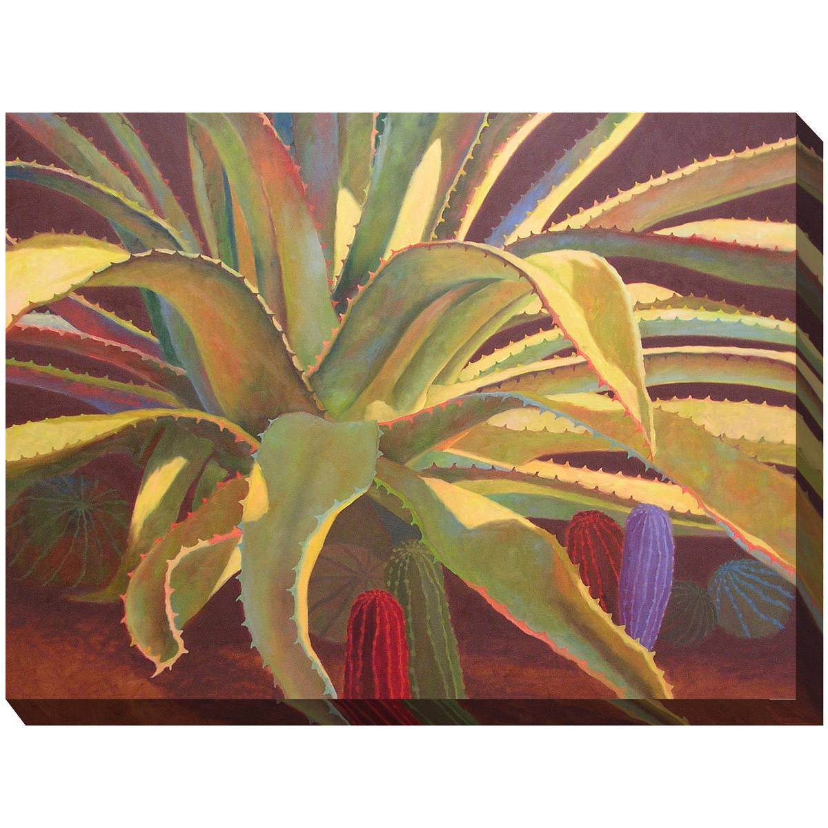 Southwest Botanicals VI Canvas Art