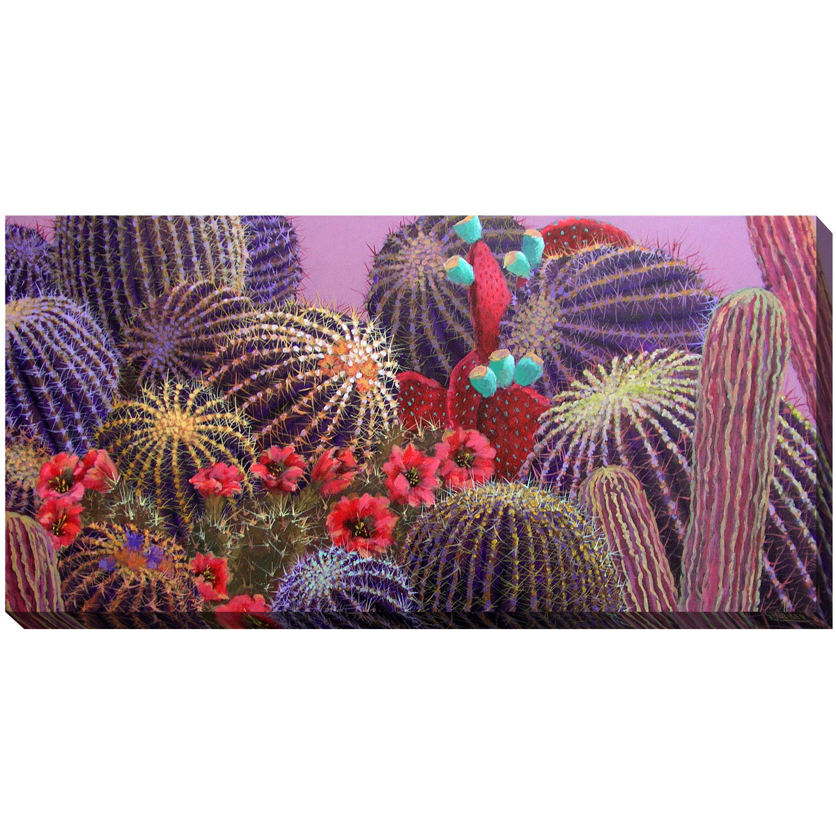 Southwest Botanicals VIII Canvas Art