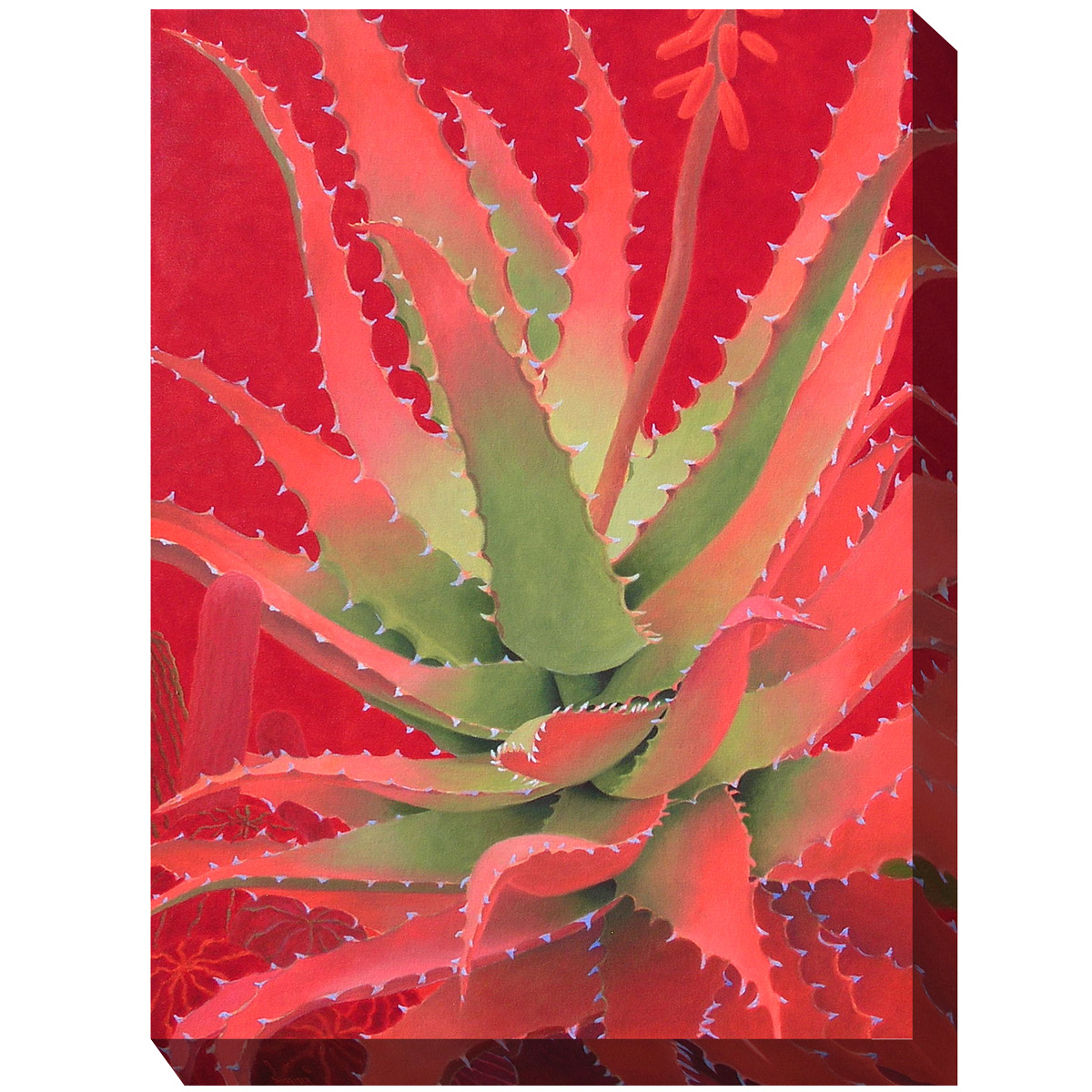 Southwest Botanicals X Canvas Art