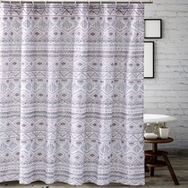 Southwestern Winter Shower Curtain