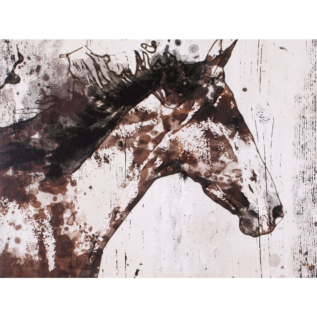 Spotted Horse I Canvas Art
