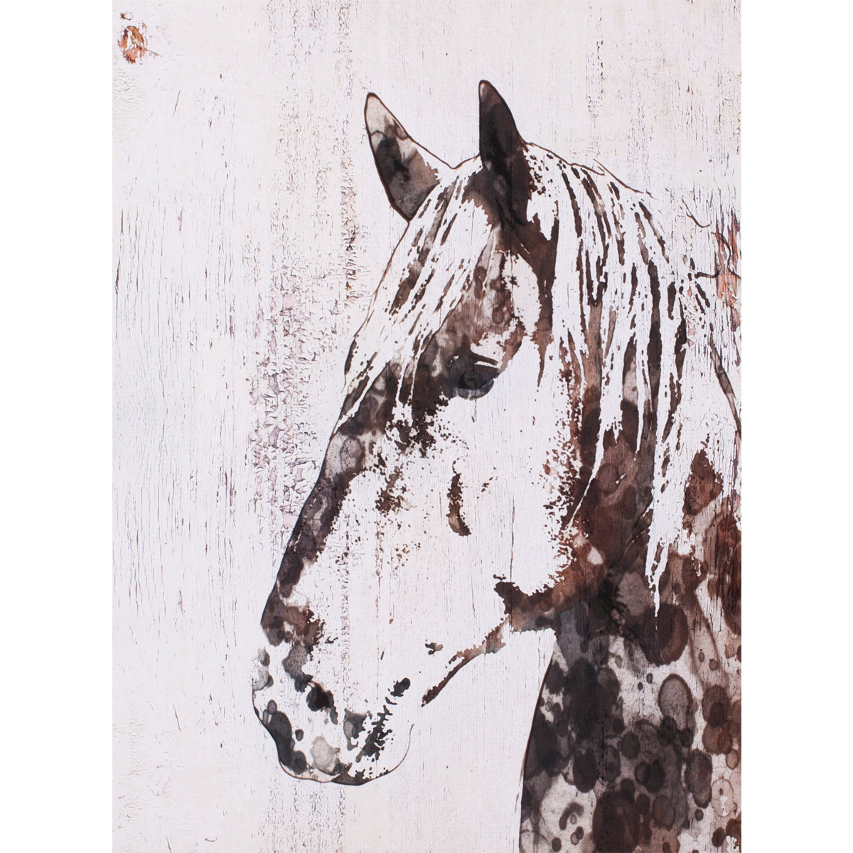 Spotted Horse III Canvas Art