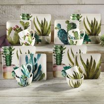 Succulent Cactus Dinner Plates - Set of 4 - OVERSTOCK