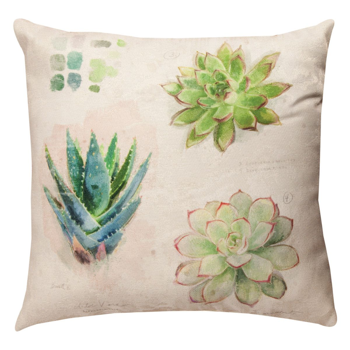 Succulent Collection Pillow - 18 x 18