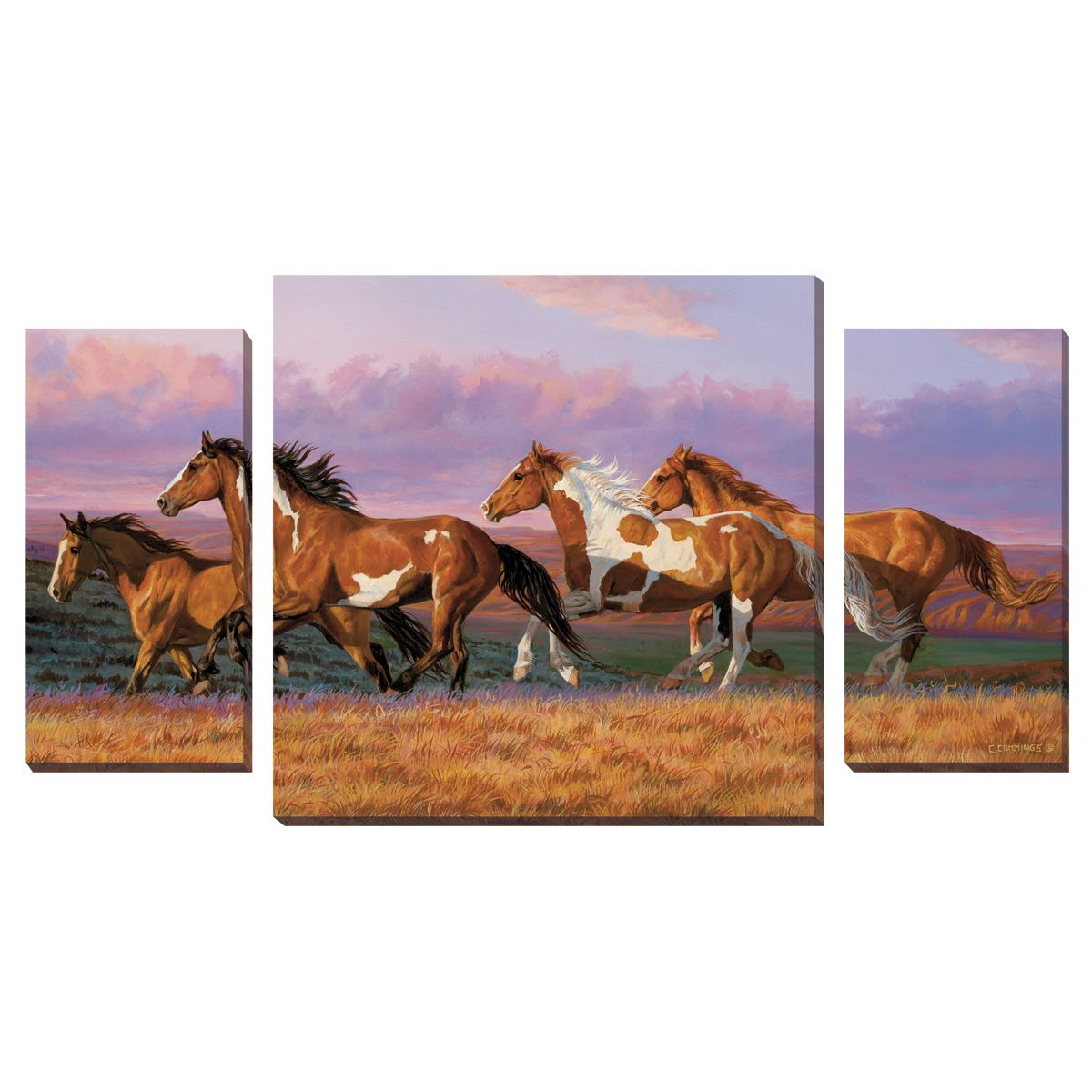 Sunset Cruise Wrapped Canvases - Set of 3