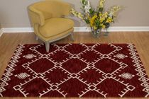 Thunderbird Red Rug - 5 x 8