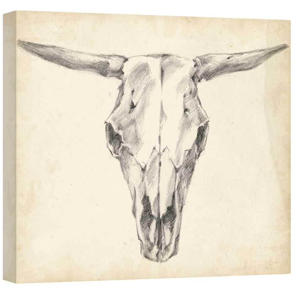 Western Skull Mount II Gallery Wrapped Canvas