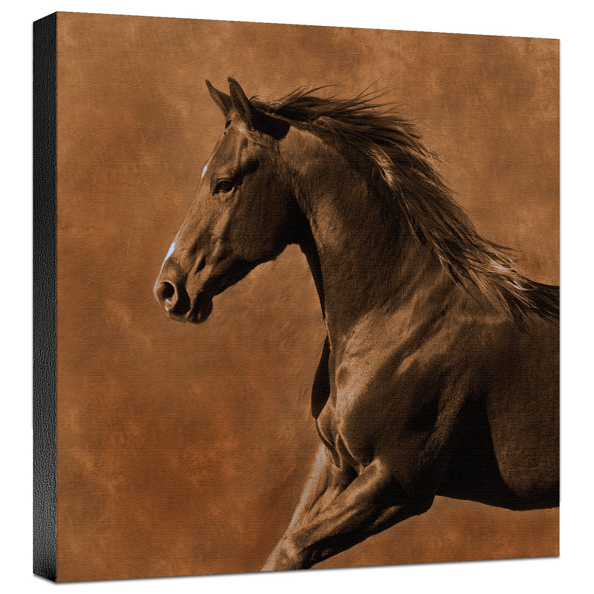Westward Gallop Gallery Wrapped Canvas