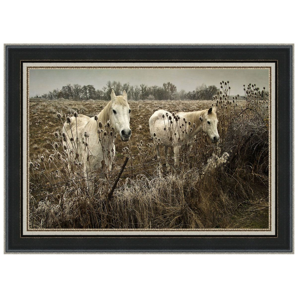 White Horses Framed Print