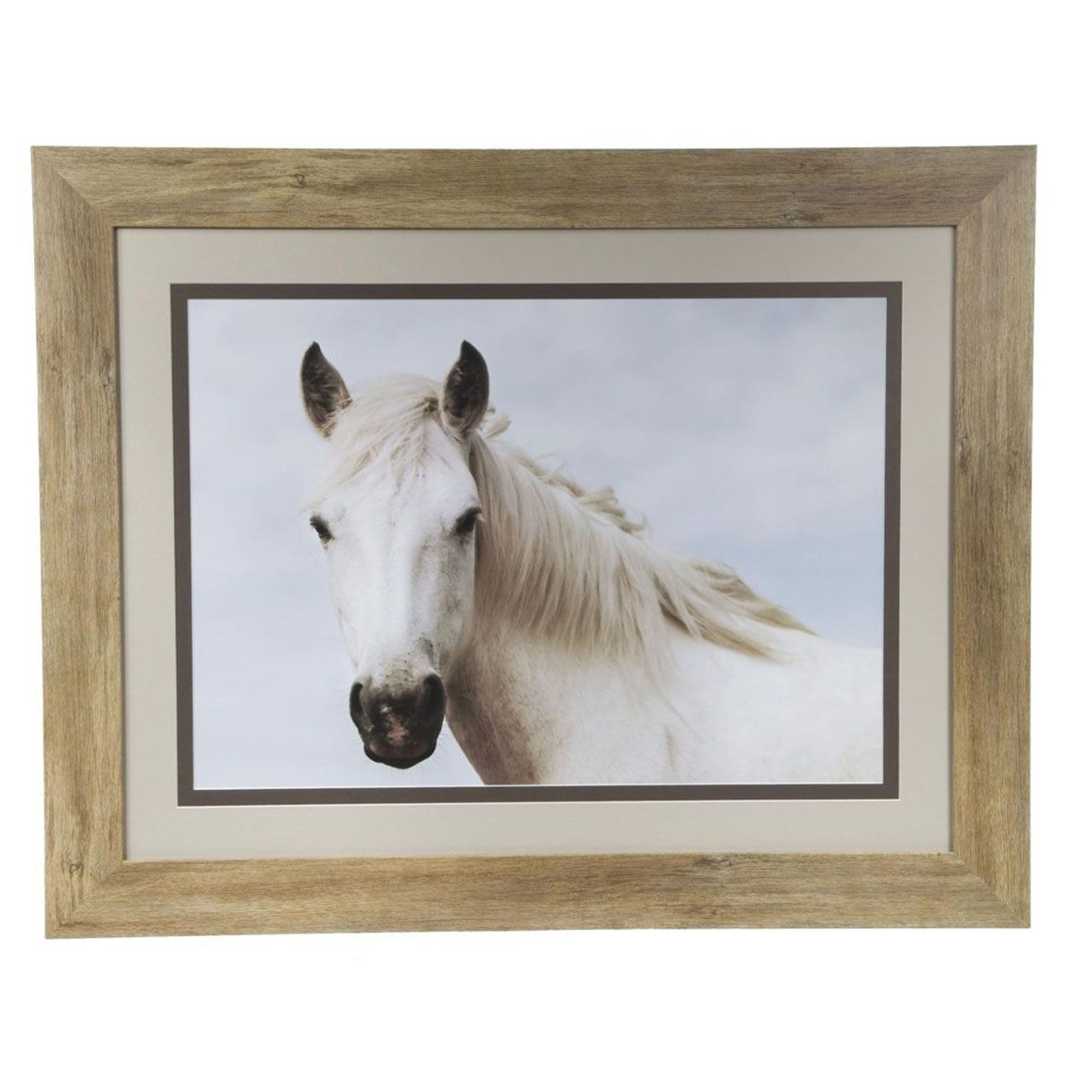 White Stallion Stare Framed Print