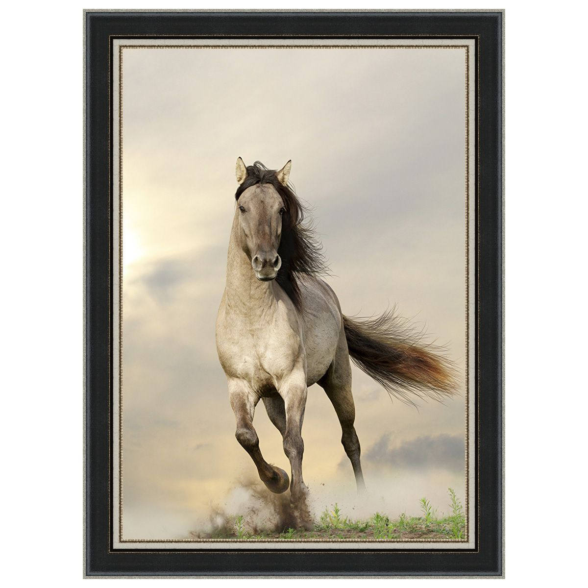 Wild Stallion Black Framed Canvas