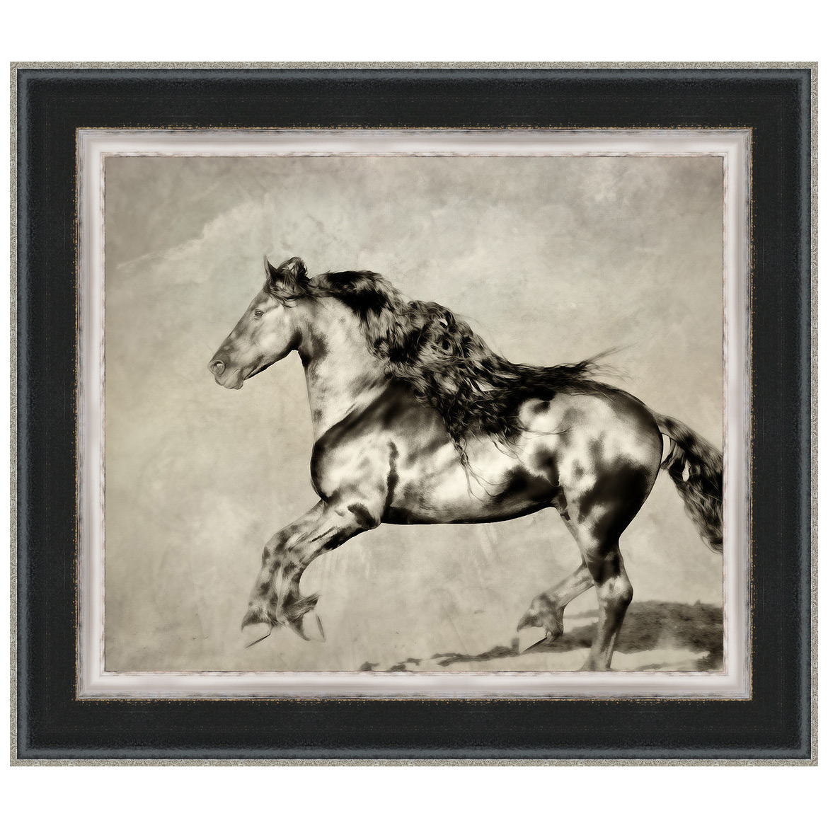 Wind Blown Mane III Framed Print