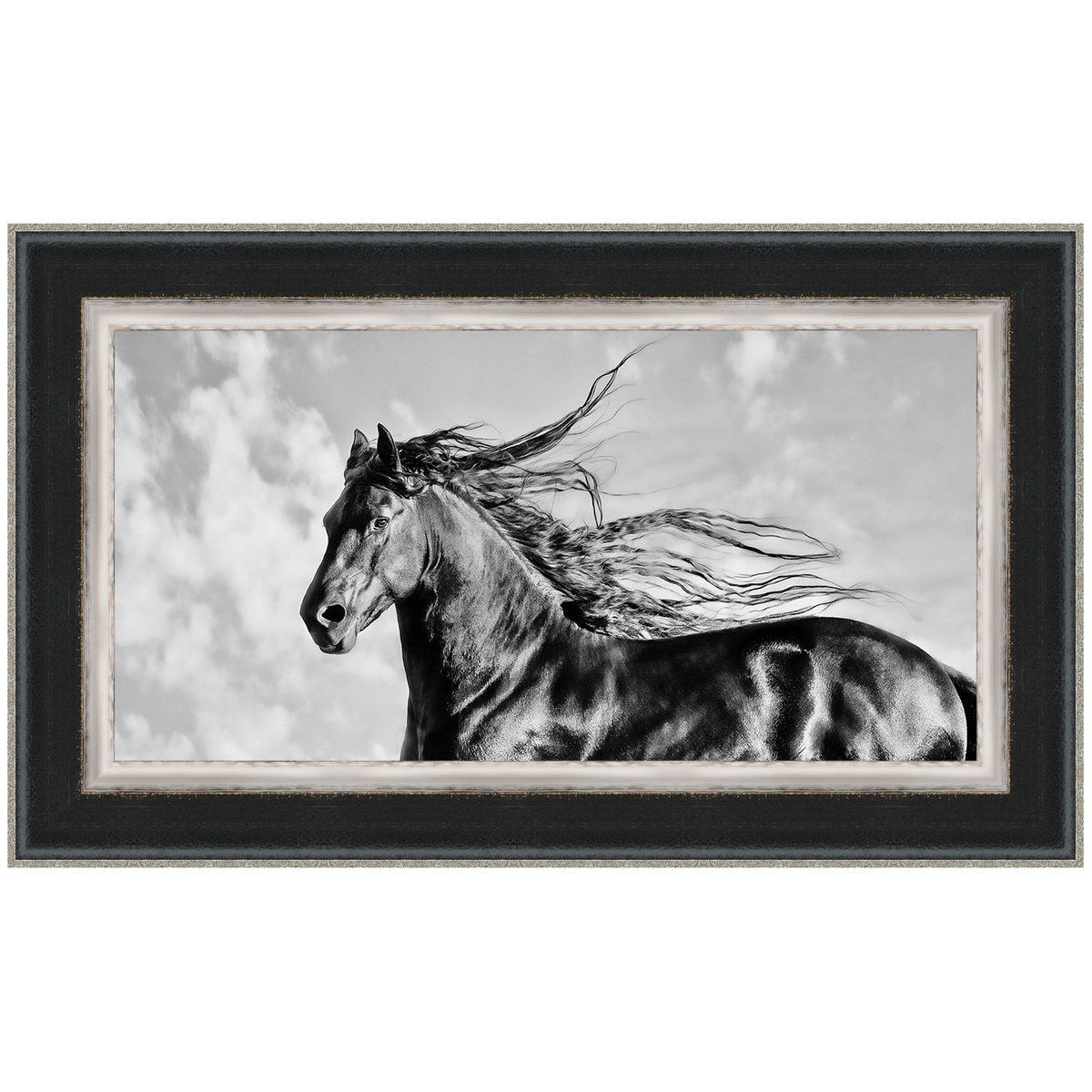 Wind Blown Mane IV Framed Print