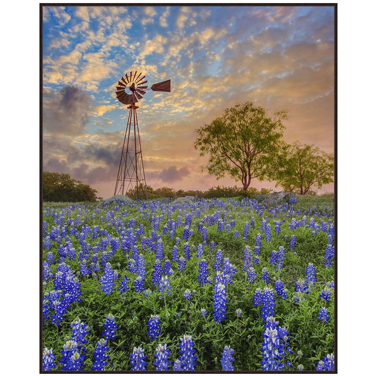 Windmill Sky Canvas Art