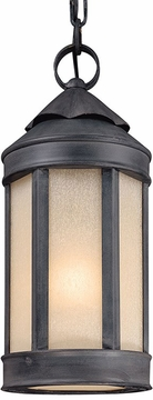 "Troy Andersons Forge 16"" LED Outdoor Pendant Lighting FL1467AI"