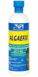 API Algae Fix