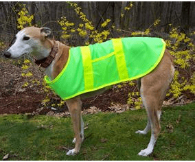 Greyhound Dog Reflective Safety Vest Medium,  Price includes free shipping, (21 inches long by upto 28 inches wide) 65-80 lbs