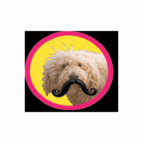 Humunga Stache from $9.95 by MPets **WARNING** Only for dogs with a sense of humor!