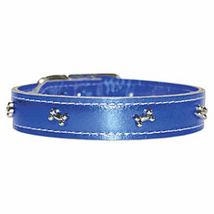 "Omni Pet Signature Metallic Collars choose length of 10"", 12"", or 14"" with 1/2""  Width"