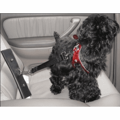 Pet Dog Cat Car Restraint, Pet Seat Belt Adapter PawRider ™