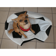 Small pet, dog bed or cat bed soccer style (Includes Free shipping)