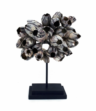 Barnacle Cluster Sculpture | Natural