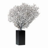 Bermuda Sea Fan Sculpture | Natural