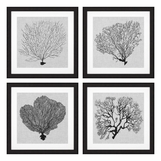 Cabo Sea Fan Prints | Set of 4