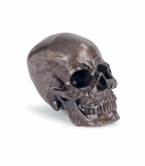 Cranio Metal Skull No. 2 | Bronze