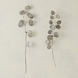 Eucalyptus Wall Sculptures | Antique Nickel