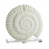 "Fossilina ""Marble"" Shell Sculpture"